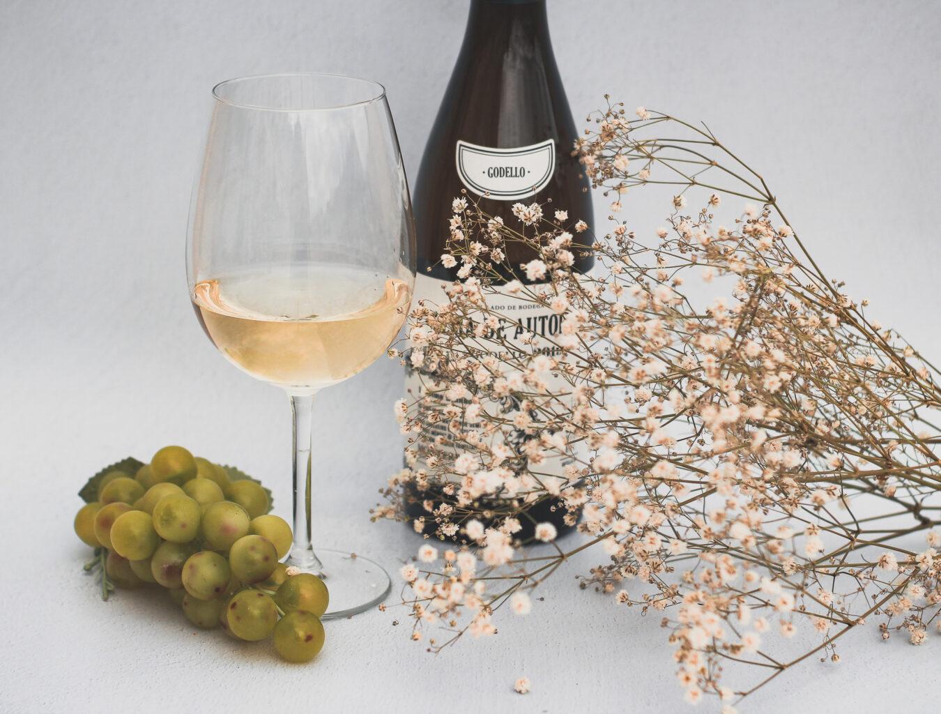 La cata de vinos blancos
