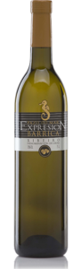 expression-barrica